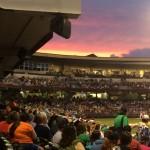 Dayton Dragons' Game 2015